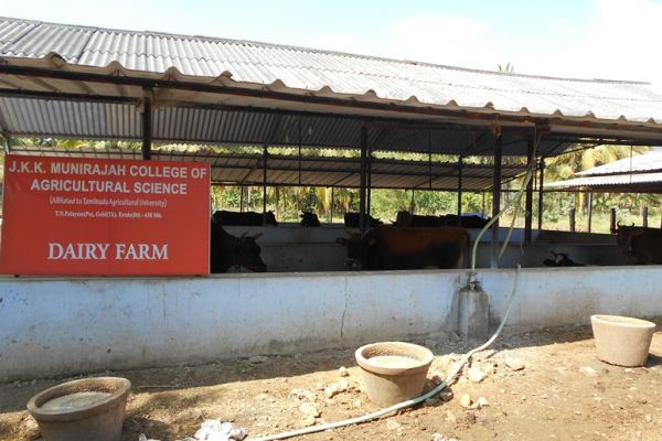 dairy-farm4D22F315-ADE6-CBB5-72D2-5F1D63241939.jpg