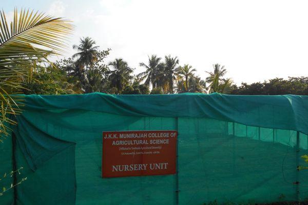 nursery8607907A-3205-FC10-01D5-0727CDAA77D1.jpg